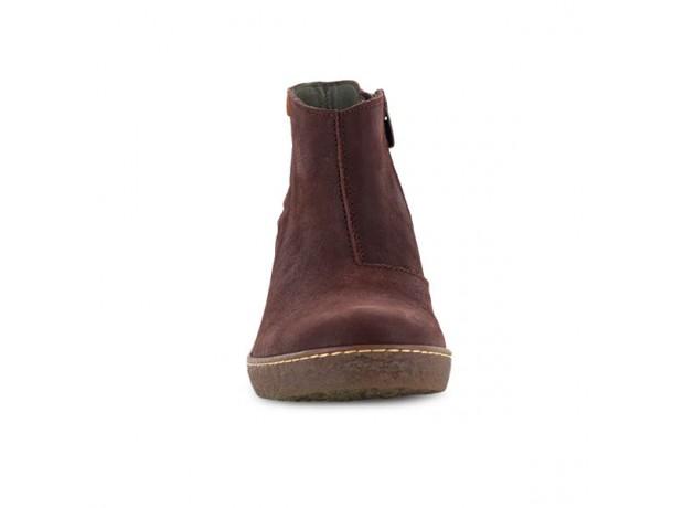 Lichen N°5171